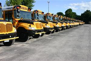 School buses in a line.