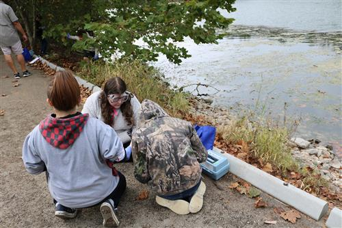 Students examining water quality