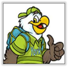 York Eagle Logo